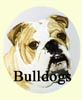 Bulldogs paintings - Dog portraits by Isabel Clark, pet portraits artist.