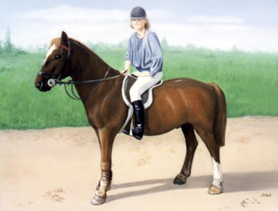 Pet Portraits - Horse and Pony Paintings from Your Favourite Photos - Horse and Rider in Oils