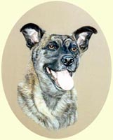 Dog Paintings in Oils or Watercolours, from Your Own Photos