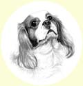 Click for larger image of dog portrait in pencil